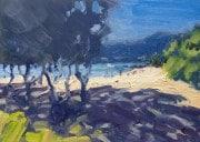 Dan-Scott-Airlie-Beach-2020-1200W