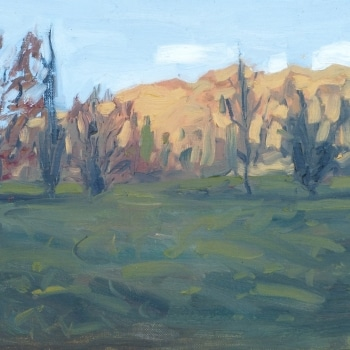 Dan-Scott-New-Zealand-Afternoon-Study-Oil-10x12-Inches