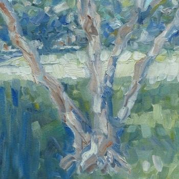 Dan-Scott-Sydney-Tree-Study-Oil-10x12-Inches-2016