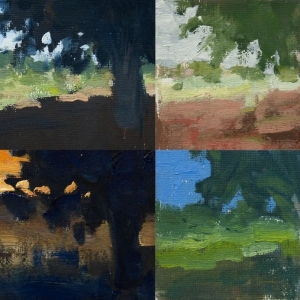 Dan-Scott-Color-Studies