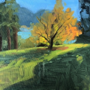 Dan-Scott-New-Zealand-Amber-Tree-Study-2019