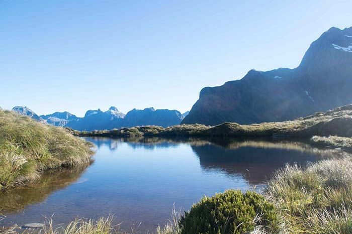 New Zealand Landscape Painting Tutorial