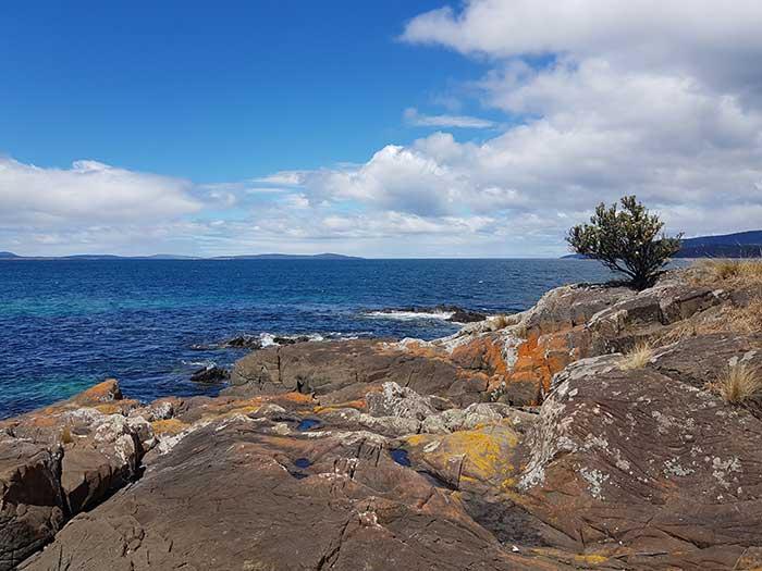 Tasmania Ref Photo