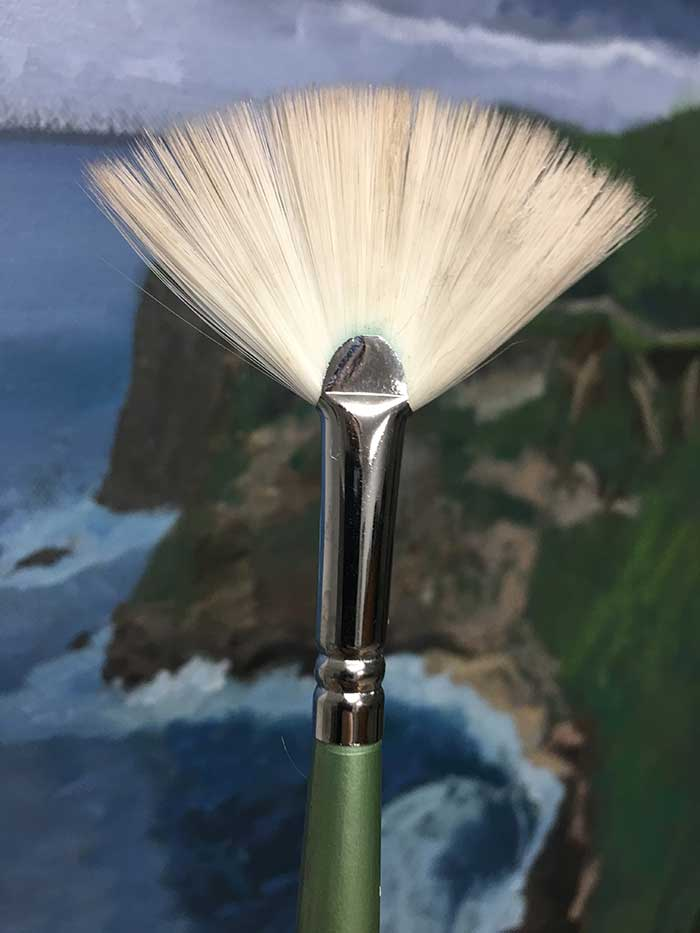 Artist Paint Brush - Fan Brush