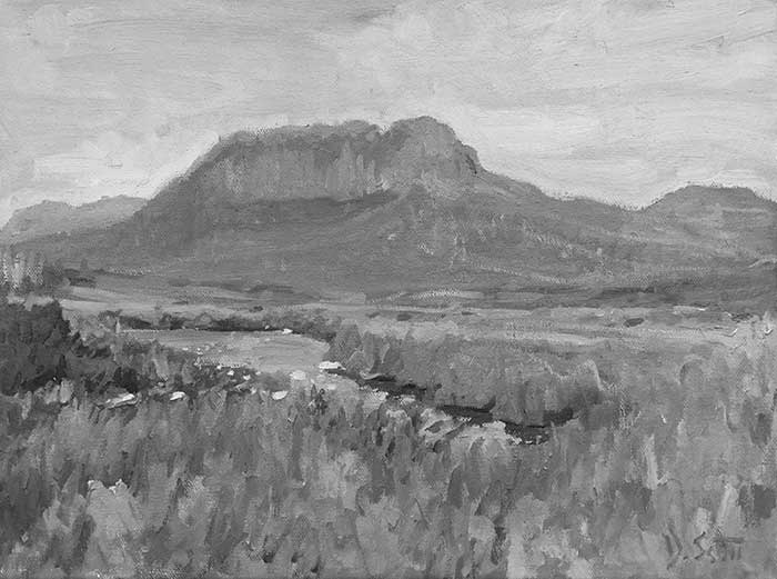Overland Track - Grayscale Image