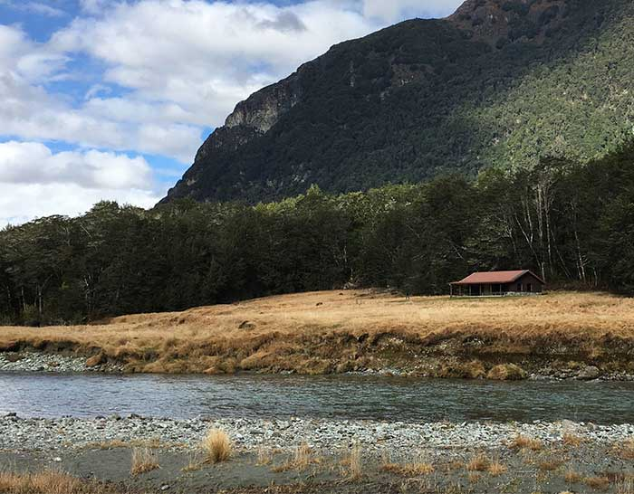 Reference Photo - New Zealand With A Red House