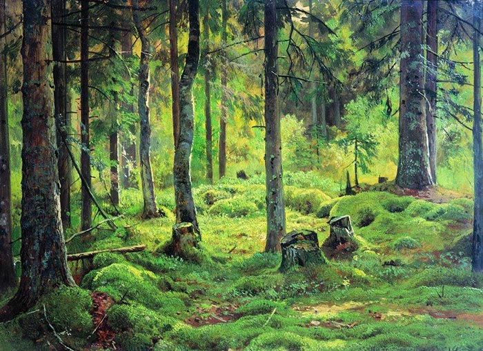 Ivan Shishkin, Deadwood, 1893