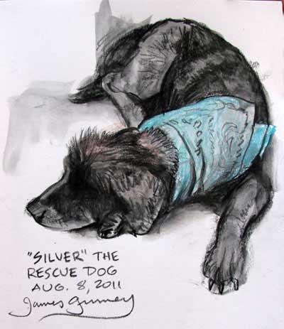 James Gurney, Old Dog Silver