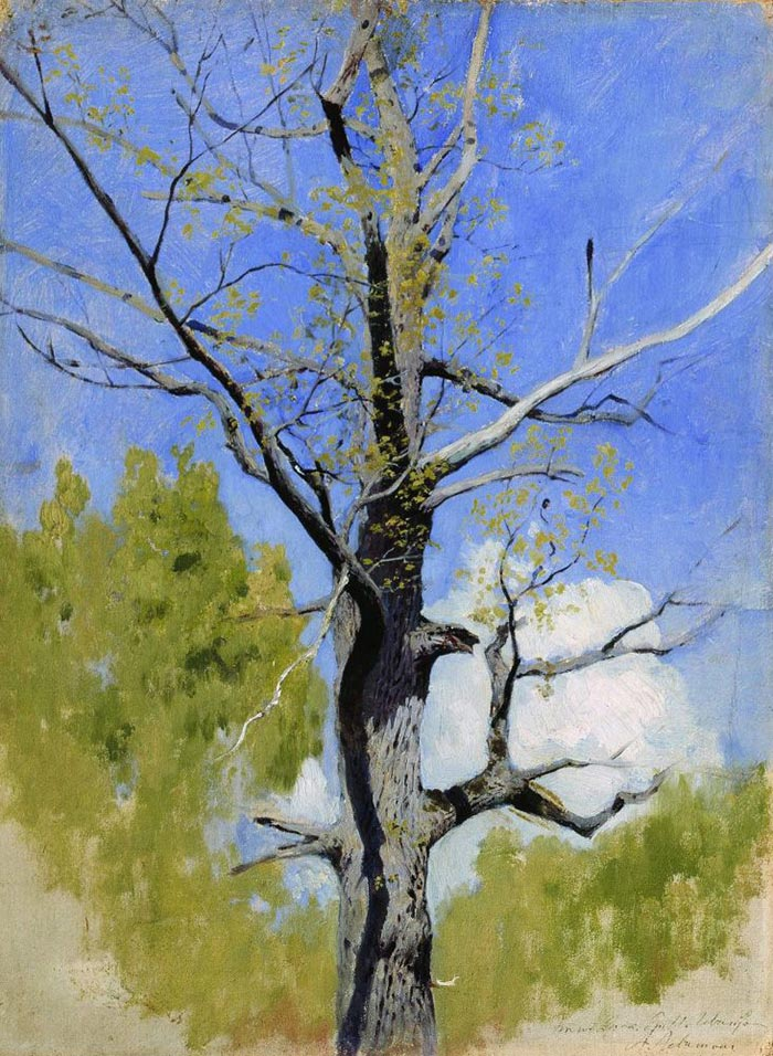 Isaac Levitan, The Trunk of a Blossoming Oak, 1884