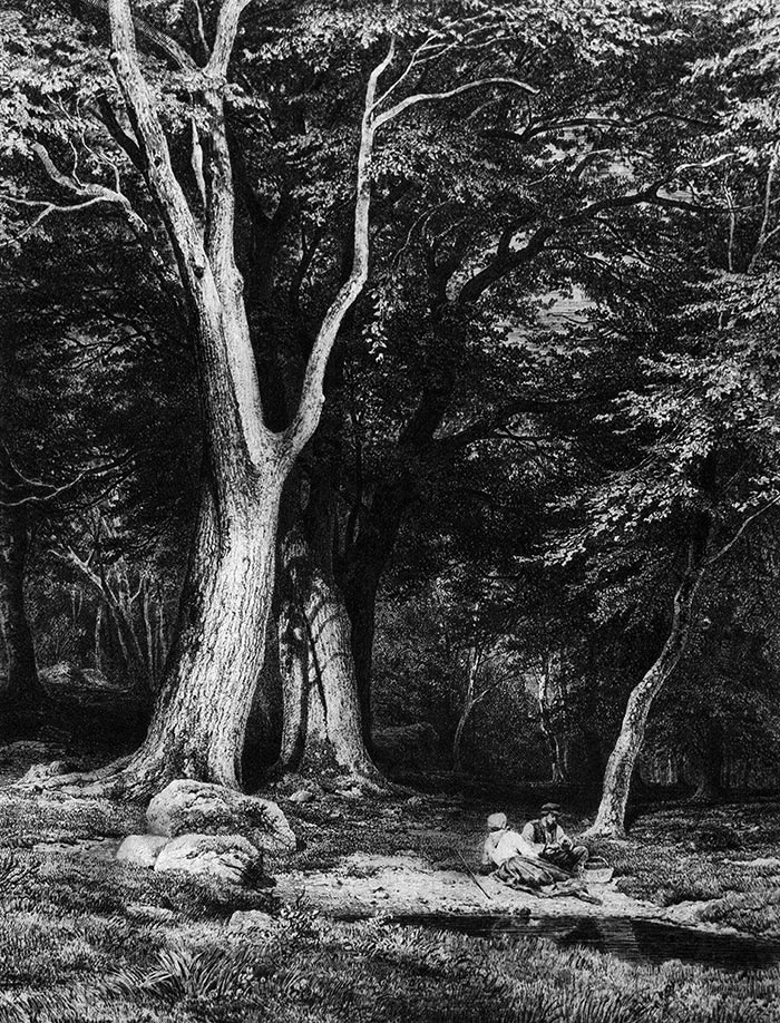 Ivan Shishkin, Etching, Vacation in the Woods, 1865