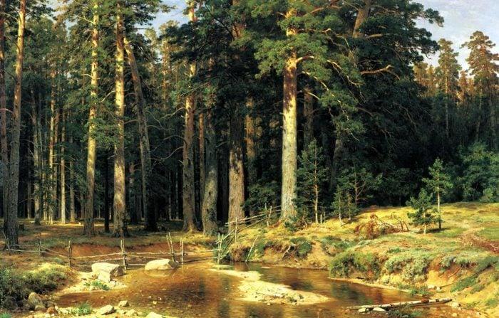 Ivan Shishkin, Mast-Tree Grove, 1898