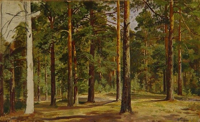 Ivan Shishkin, Pine Forest. Unfinished Sketch, c.1894
