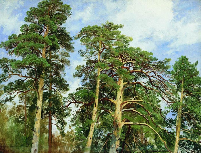 Ivan Shishkin, The Tops of the Pines, 1890