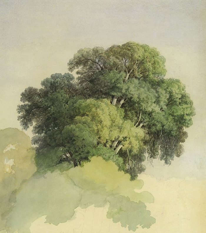 Fedor Vasilyev, The Trees, 1867