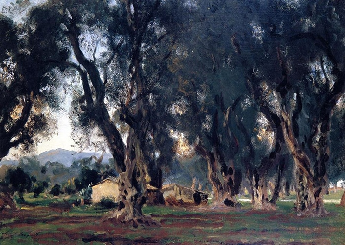 John Singer Sargent, Olive Trees on Corfu, 1909