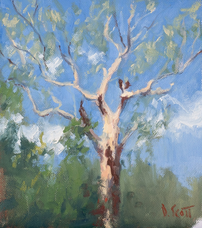Dan Scott, Tree in Perspective (Study), 2020