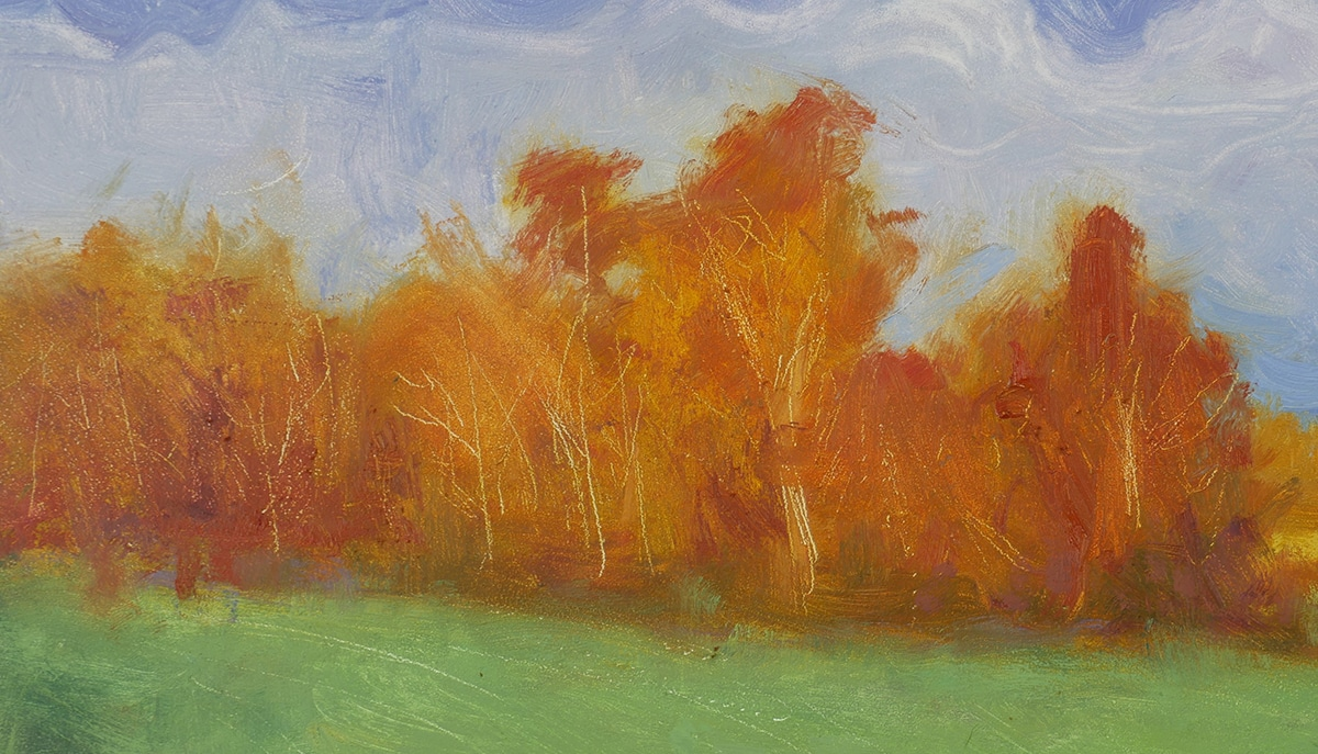 Dan Scott, Maleny, 2020 (Warm Trees)
