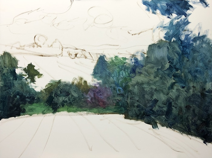 Dan Scott, Maleny, Late Afternoon, 2020 WIP (2)