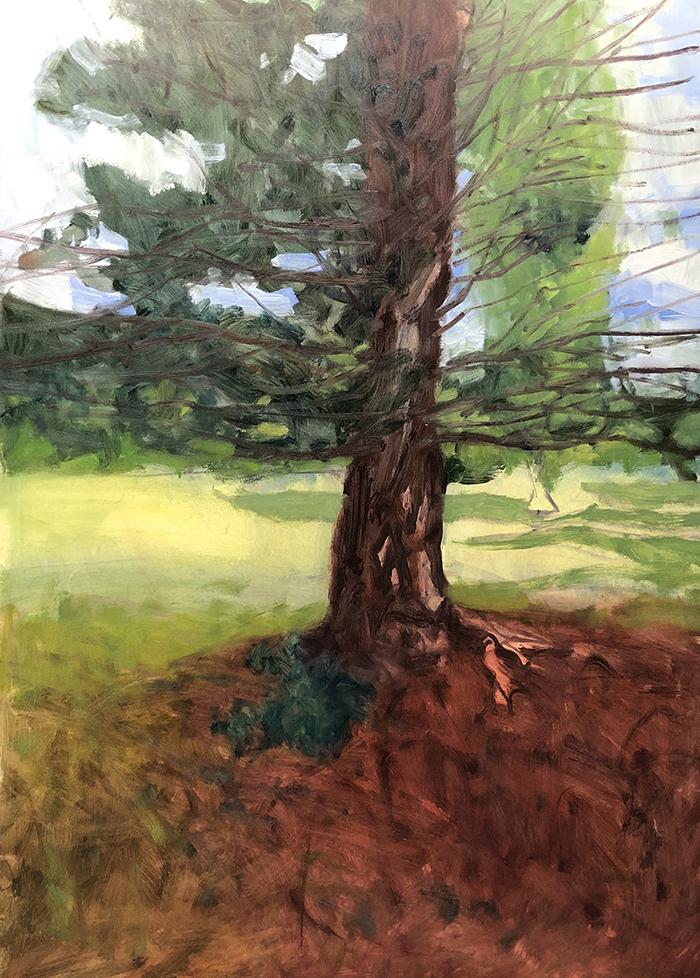 Dan Scott, Tree, Dappled Light 2020, WIP (3)