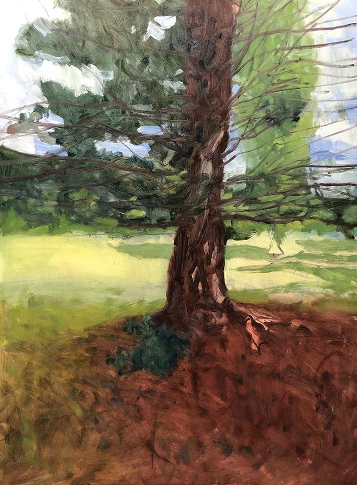Dan Scott, Tree, Dappled Light 2020, WIP (4)