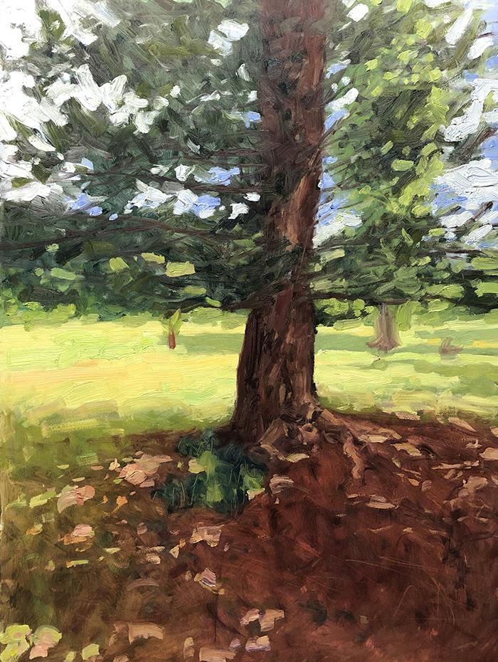 Dan Scott, Tree, Dappled Light 2020, WIP (5)