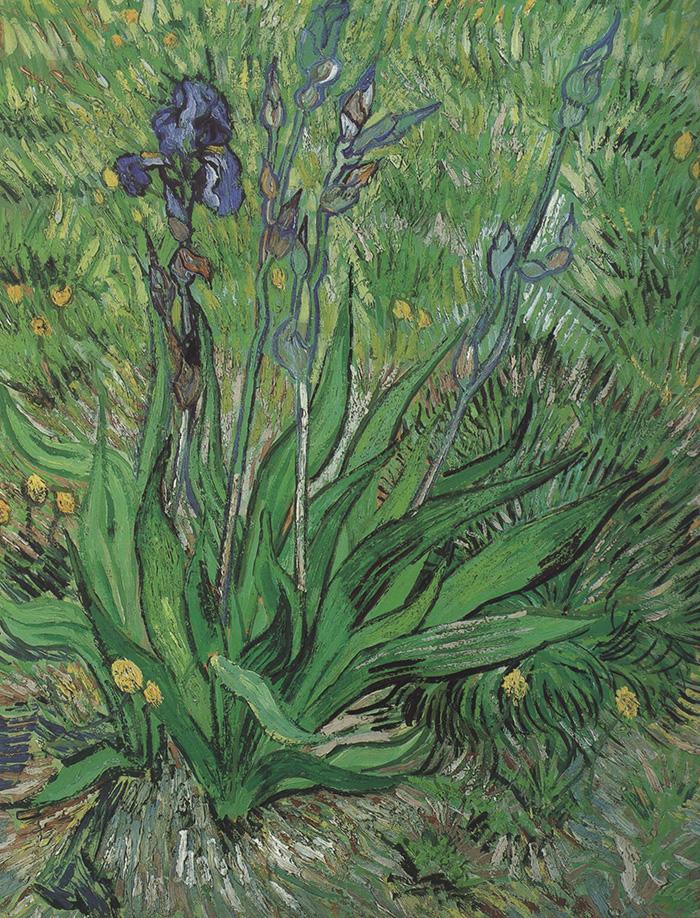 Vincent van Gogh, Iris, 1889