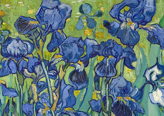 Vincent van Gogh, Irises, 1889 (Detail 4)