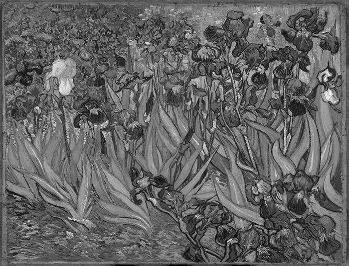 Vincent van Gogh, Irises, 1889 (Grayscale)