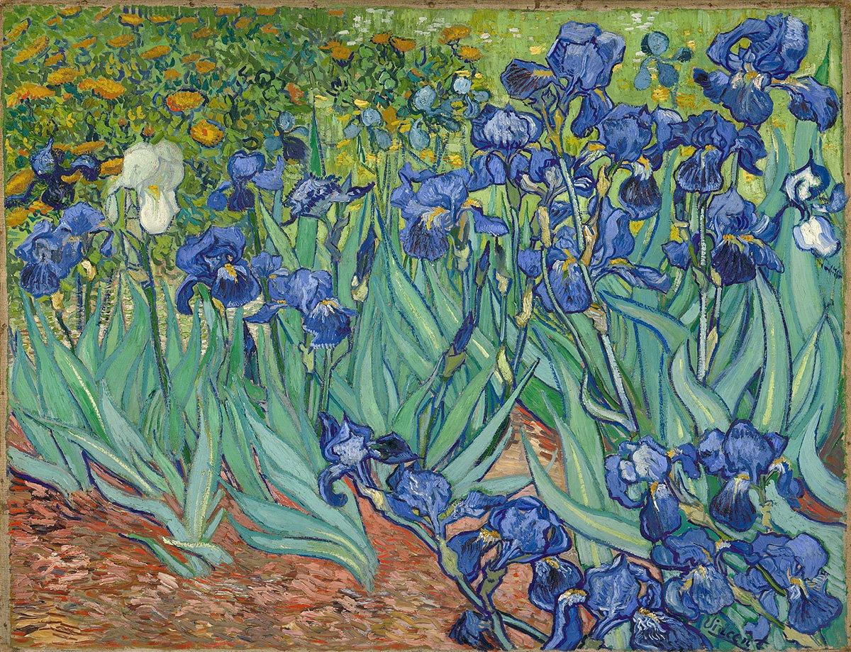 Vincent van Gogh, Irises, 1889