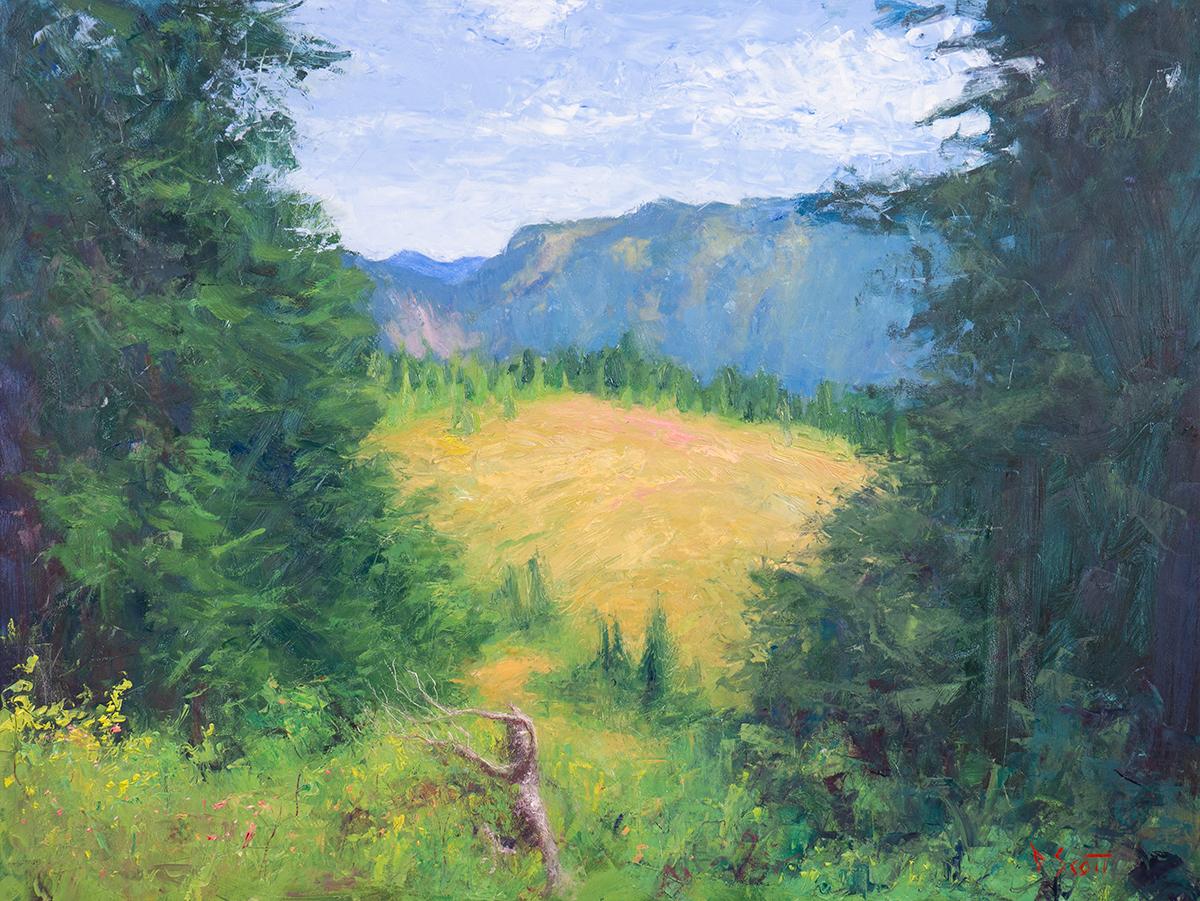 Dan Scott, American Landscape, 2020