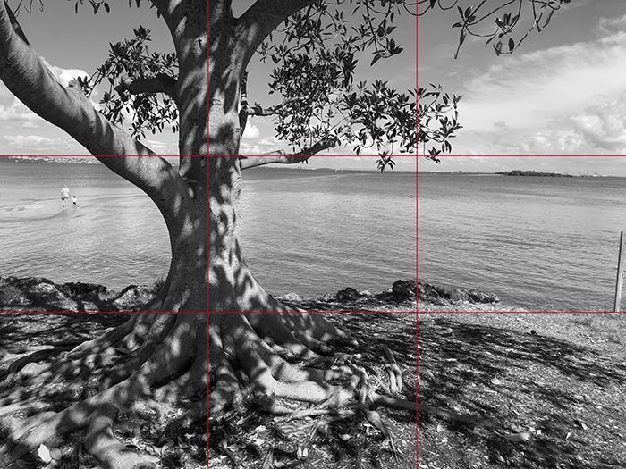 greyscaled_gridlines_Dan Scott, Wellington Point, Reference Photo