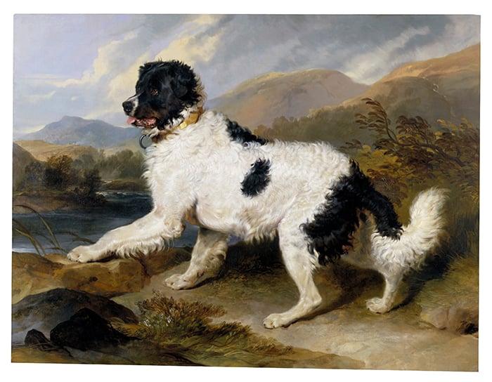 Edwin Landseer, Lion A Newfoundland Dog, 1824