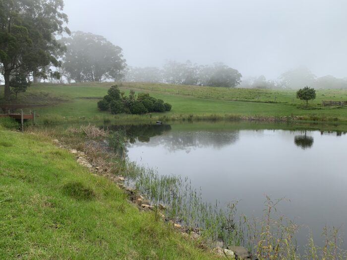 Spicers Peak Lodge, Maryvale QLD, March 2021 (46)