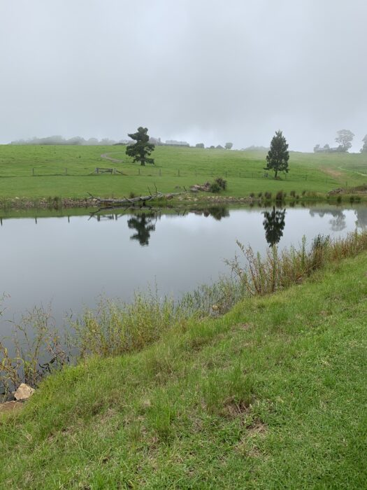 Spicers Peak Lodge, Maryvale QLD, March 2021 (51)