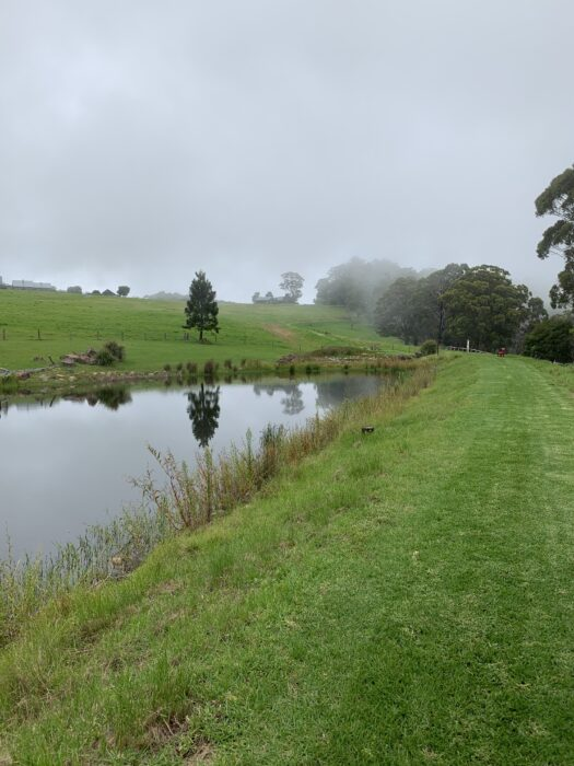 Spicers Peak Lodge, Maryvale QLD, March 2021 (52)