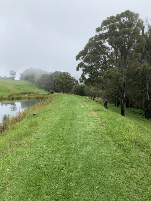Spicers Peak Lodge, Maryvale QLD, March 2021 (53)