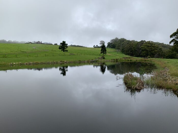 Spicers Peak Lodge, Maryvale QLD, March 2021 (56)