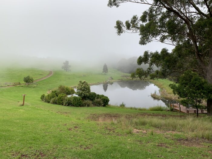 Spicers Peak Lodge, Maryvale QLD, March 2021 (57)