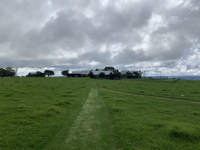 Spicers Peak Lodge, Maryvale QLD, March 2021 (61)