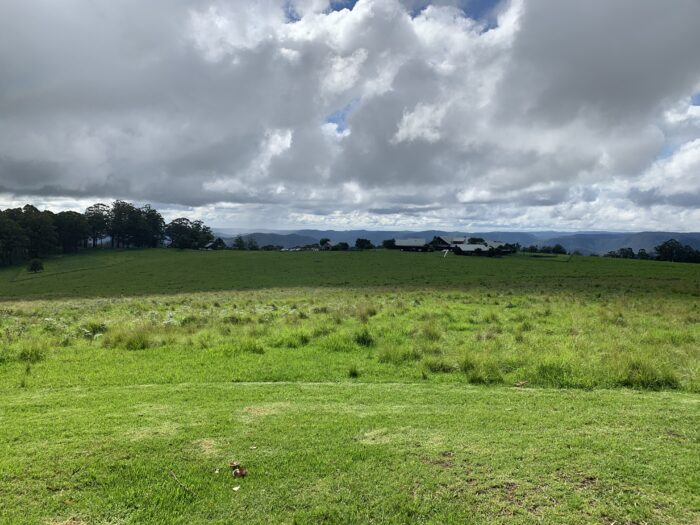 Spicers Peak Lodge, Maryvale QLD, March 2021 (66)