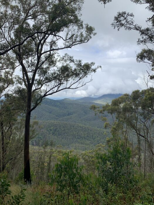 Spicers Peak Lodge, Maryvale QLD, March 2021 (67)