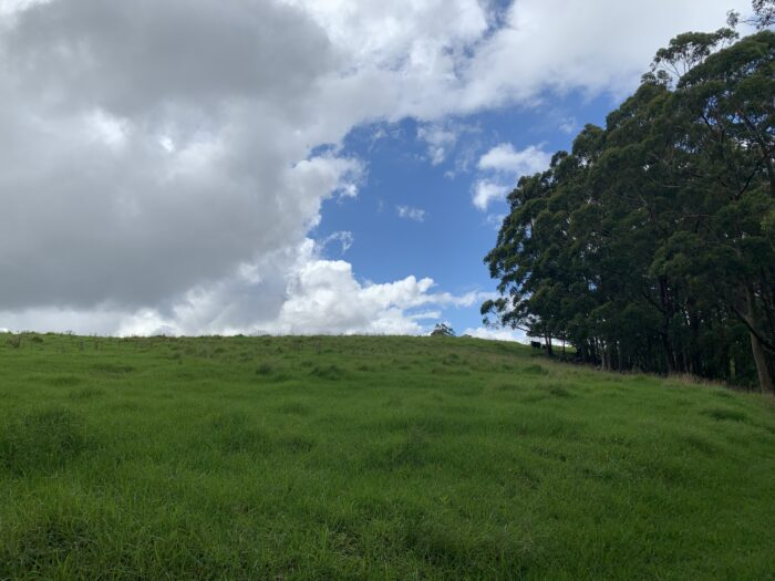 Spicers Peak Lodge, Maryvale QLD, March 2021 (68)