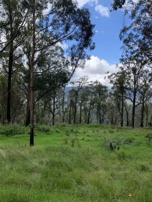 Spicers Peak Lodge, Maryvale QLD, March 2021 (70)