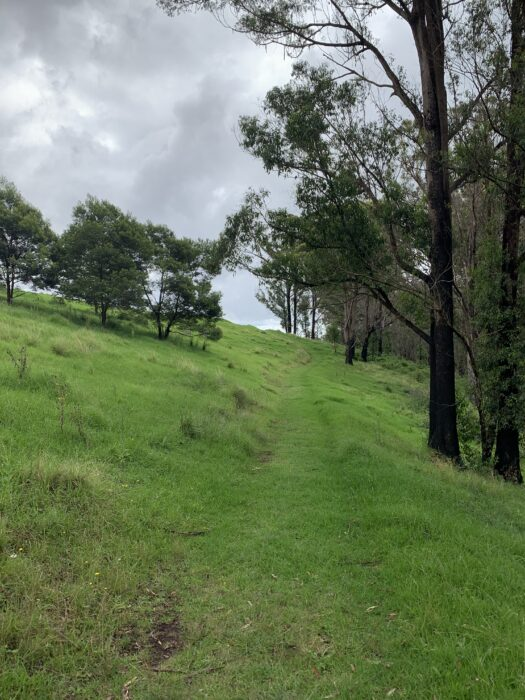 Spicers Peak Lodge, Maryvale QLD, March 2021 (71)
