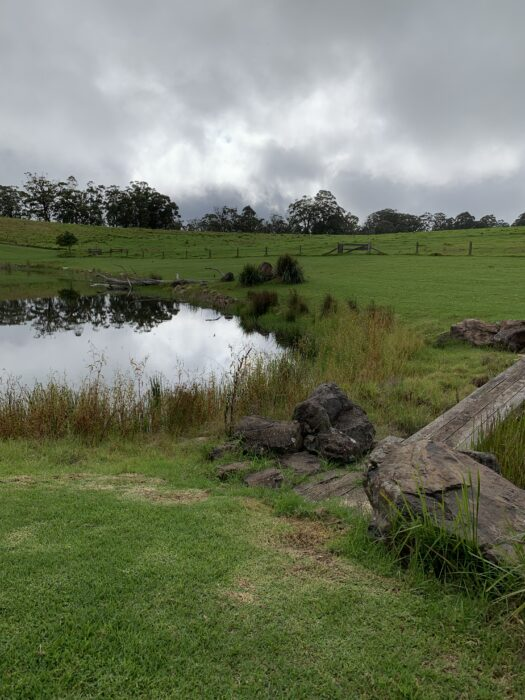 Spicers Peak Lodge, Maryvale QLD, March 2021 (78)