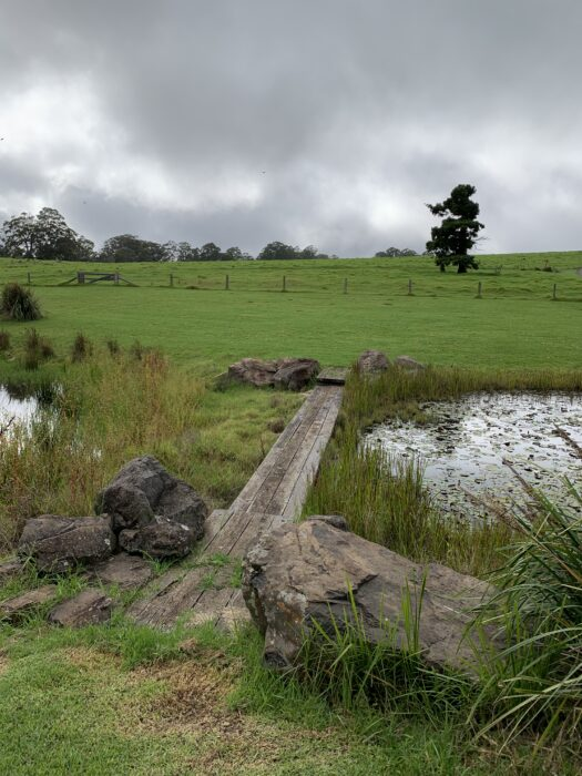 Spicers Peak Lodge, Maryvale QLD, March 2021 (79)
