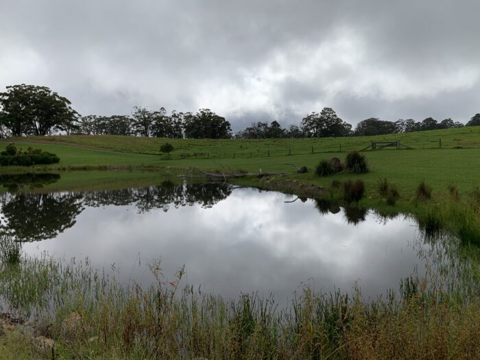 Spicers Peak Lodge, Maryvale QLD, March 2021 (80)
