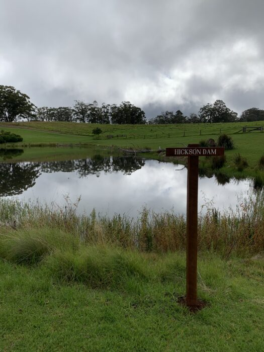Spicers Peak Lodge, Maryvale QLD, March 2021 (81)