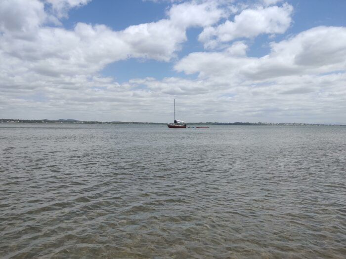 Wellington Point, QLD, Feb 2021 (1)