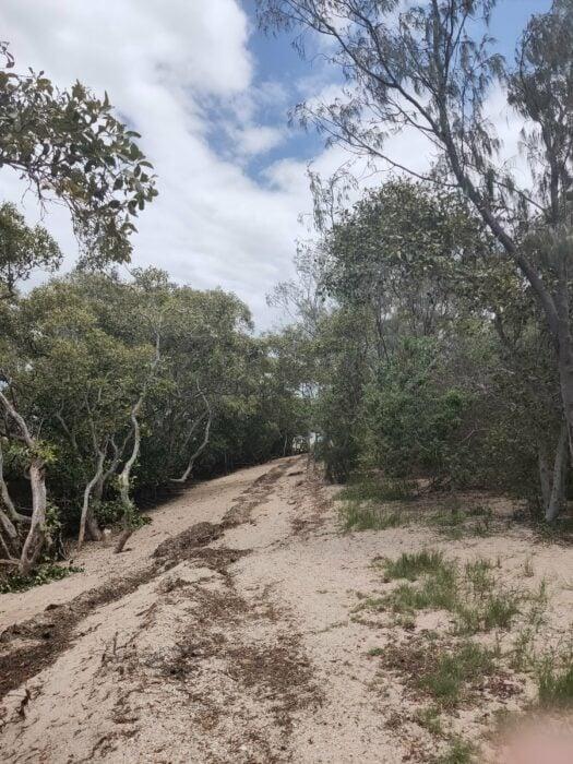 Wellington Point, QLD, Feb 2021 (11)